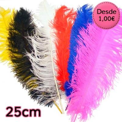 Plumas de Avestruz de 25 a 30 cm