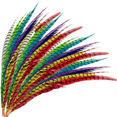 Plumas de Faisán para Carnaval